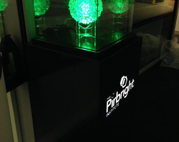 Pirbright Led lit bacteria